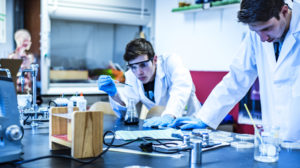 Scientists doing laboratory reserach